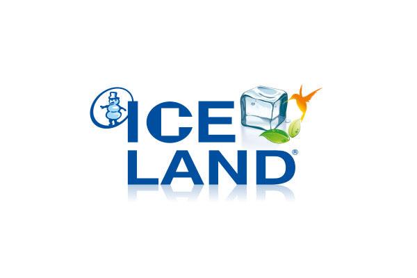 salvador-iceland-logo