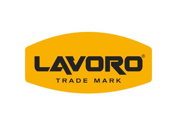 salvador-lavoro-logo