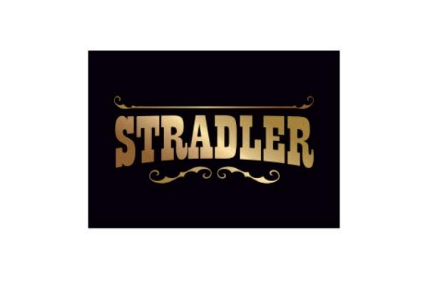 salvador-stradler-logo
