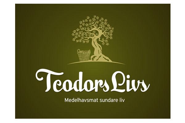 salvador-teodors-logo